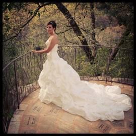 Angel Bride Iii