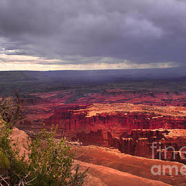 Approaching Storm  by Robert Bales