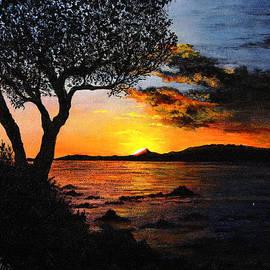 Aruba Sunset by Stuart B Yaeger
