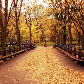 Vivienne Gucwa - Autumn - Central Park - New York City