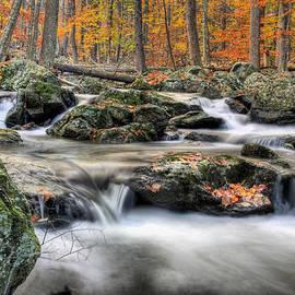 Autumn Dreams by JC Findley