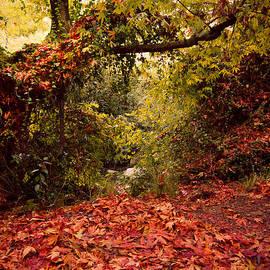 Nadya Ost - Autumn Dreams