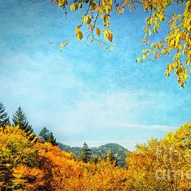Cheryl Davis - Autumn Mountain Beauty