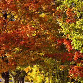 Joann Vitali - Autumn Palette