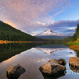 Autumn Foliage at Trillium Lake in Mount Hood National Forest by Tom Schwabel