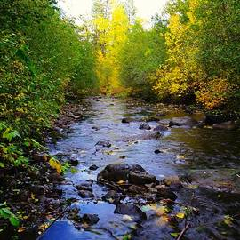 Autumn Splendor by Jeff Swan