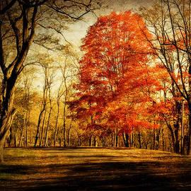 Kathy Jennings - Autumn Trail