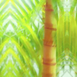 Bamboo Palm Fantasy by Vicki Hone Smith