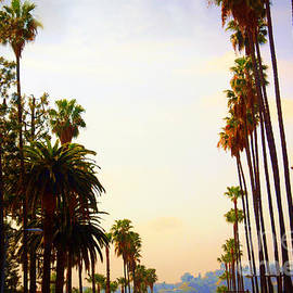 Beverly Hills In La by Susanne Van Hulst