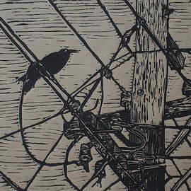 Bird On A Wire by William Cauthern