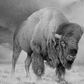 Bison by Peter Heydeck