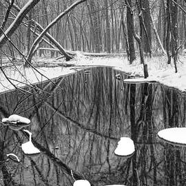 Randall Nyhof - Black and white photograph of a winter stream