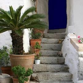 Blue Door In Greece by Sabrina L Ryan