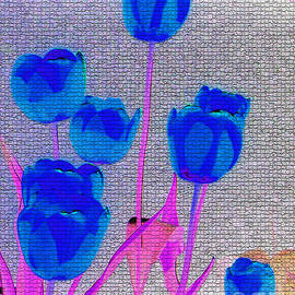 Blue Tulip Abstract by Carol F Austin