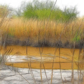Steve K - Brackish water and reed