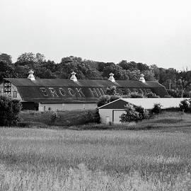 Jan W Faul - Brook Hill Dairy Farm