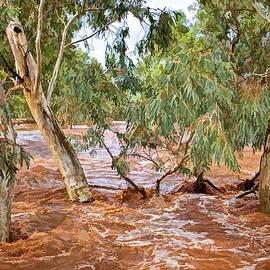 Paul Svensen - Bush Flood