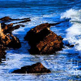 Tap On Photo - California Pacific Pismo Beach Coastline