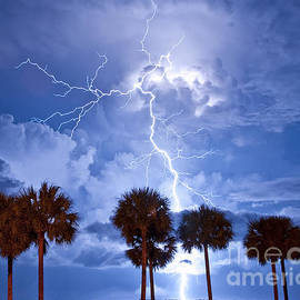 Causeway Lightning by Stephen Whalen