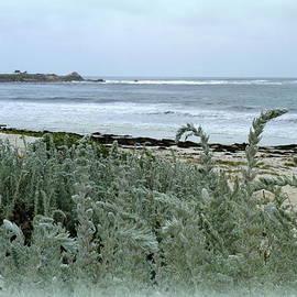 Carla Parris - Celadon Seascape