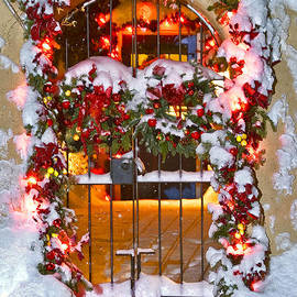Christmas Gate by Lou  Novick