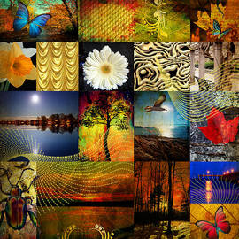 Mark Ashkenazi - Collage of colors