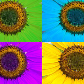 Colorful Sunflowers by James BO Insogna