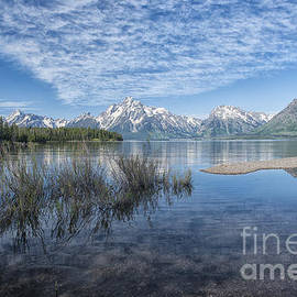 Sandra Bronstein - Colter Bay Morning - Grand Teton