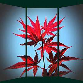 Nick Kloepping - Crimsom Leaves of Autumn
