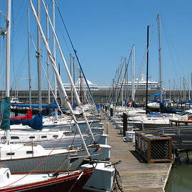 Boats Galore At Pier 39. San Francisco, California by Connie Fox