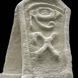Cryptic Egypt Snow by LeeAnn McLaneGoetz McLaneGoetzStudioLLCcom