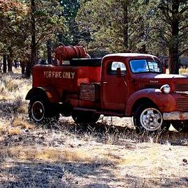 Logging Fire Truck by Nick Kloepping