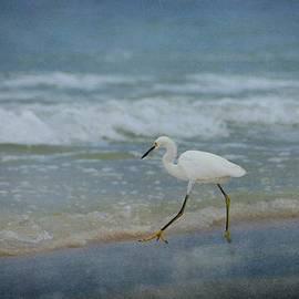 Sandy Keeton - Egret