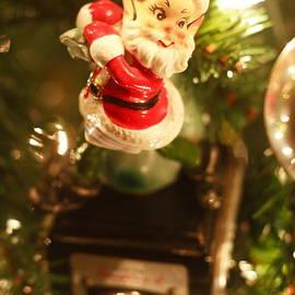 Elf on a Camera by Toni Hopper