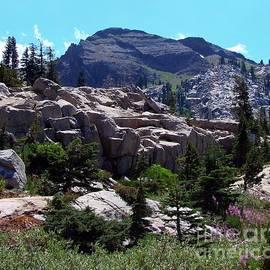 Emigrant Peak Squaw Valley Usa by Scott McGuire