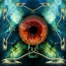 Eve S Eye by Rosa Cobos