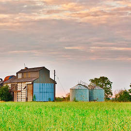 Tom Gowanlock - Farm buildings