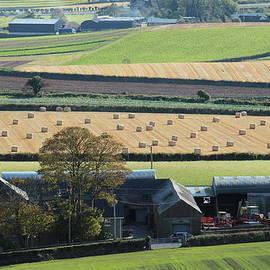 farming Northern Ireland  by Noel Sofley