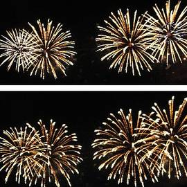 Firework lifecycle 1 by Meandering Photography