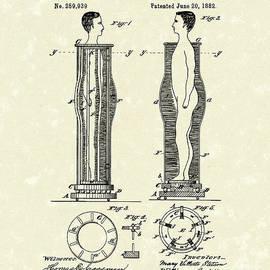 Flesh Brushing Apparatus 1882 Patent Art by Prior Art Design