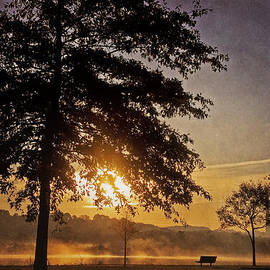 Foggy Sunrise by Cheryl Davis