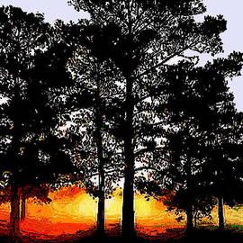 Amber Stubbs - Foggy Tree Sunrse