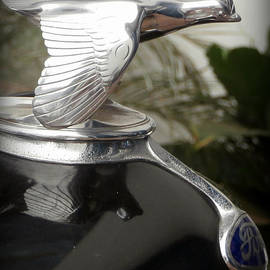 Karyn Robinson - Ford Flying Bird Radiator Cap