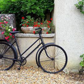 Pauline Cutler - French Bike