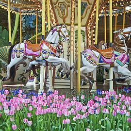 Garden Carousel by Cheri Randolph