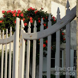 Lainie Wrightson - Garden Gate