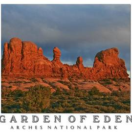 PMG Images - Garden Of Eden