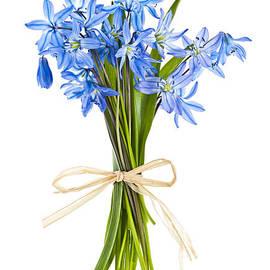 Blue wildflower bouquet by Elena Elisseeva