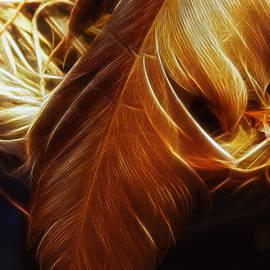 Linda Tiepelman - Glowing Quill
