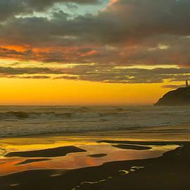 Golden Beach by Robert Bales